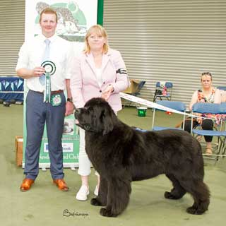 Best Opposite In Show from the 4 August 2018 Open Show