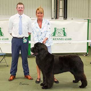 Reserve Best In Show and Best Puppy In Show from the 4 August 2018 Open Show