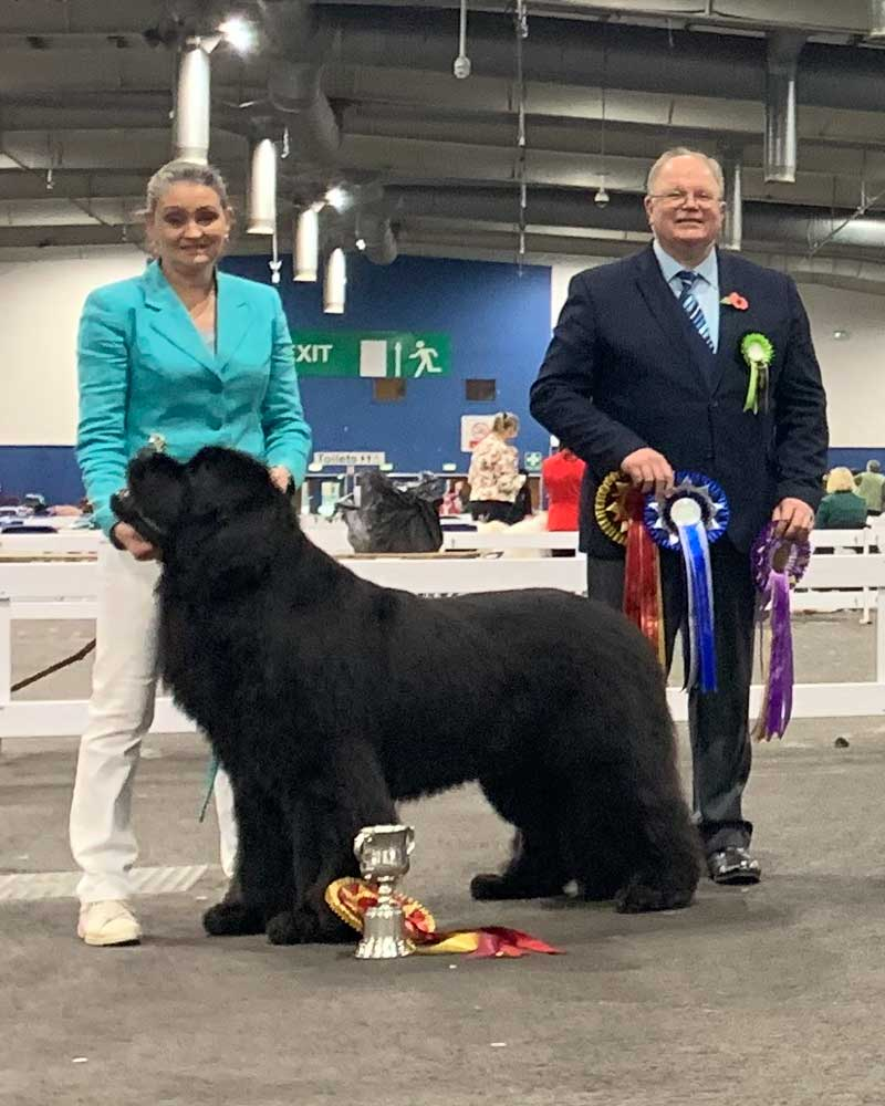 Best In Show winner, Zentaur Der Kapitain Wisperedomen JW ShCM with judge Mr. Keith Baldwin (Nightstorm)
