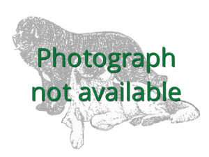 Photograph not available